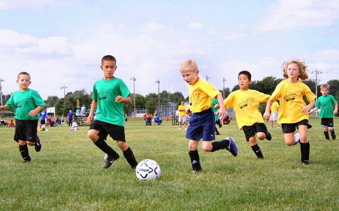 Teamplayer: So profitieren wir von Mannschaftssportarten